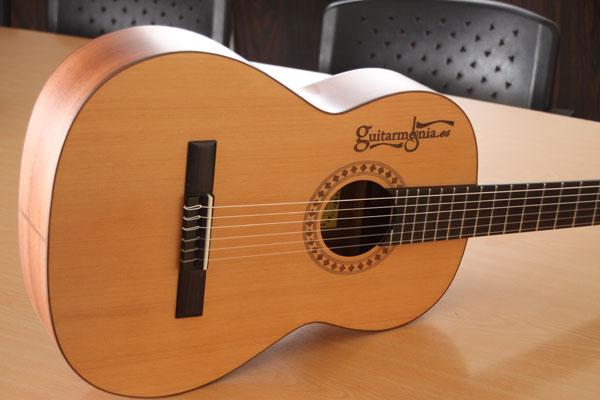 Registro de la guitarra