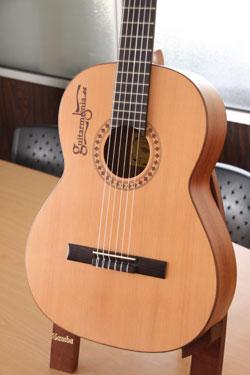 Guitarra de guitarmonia