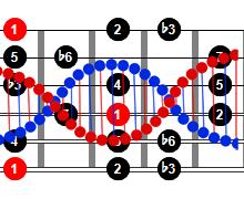 ADN de una escala